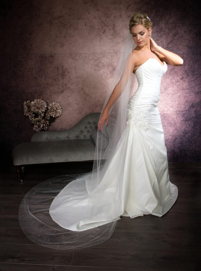Bride posing in a long one layer chapel length veil