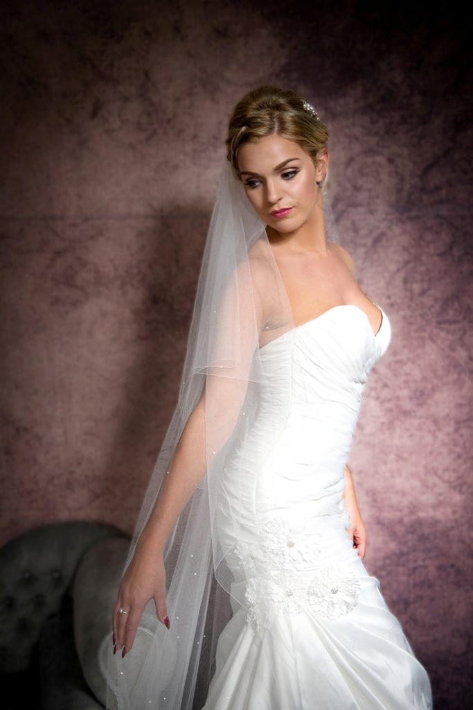 chapel length veil with scattered diamantes