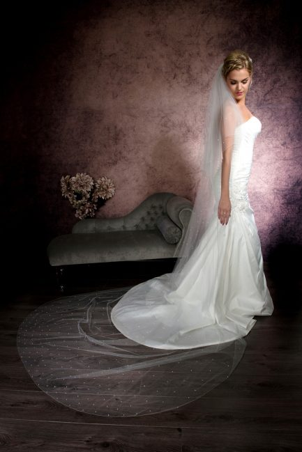 Serena- two layer cathedral length veil with crystals falling stars
