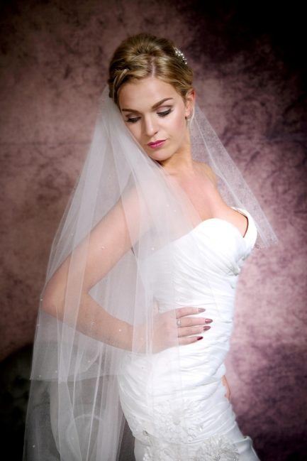 cathedral length veil with Ab crystals