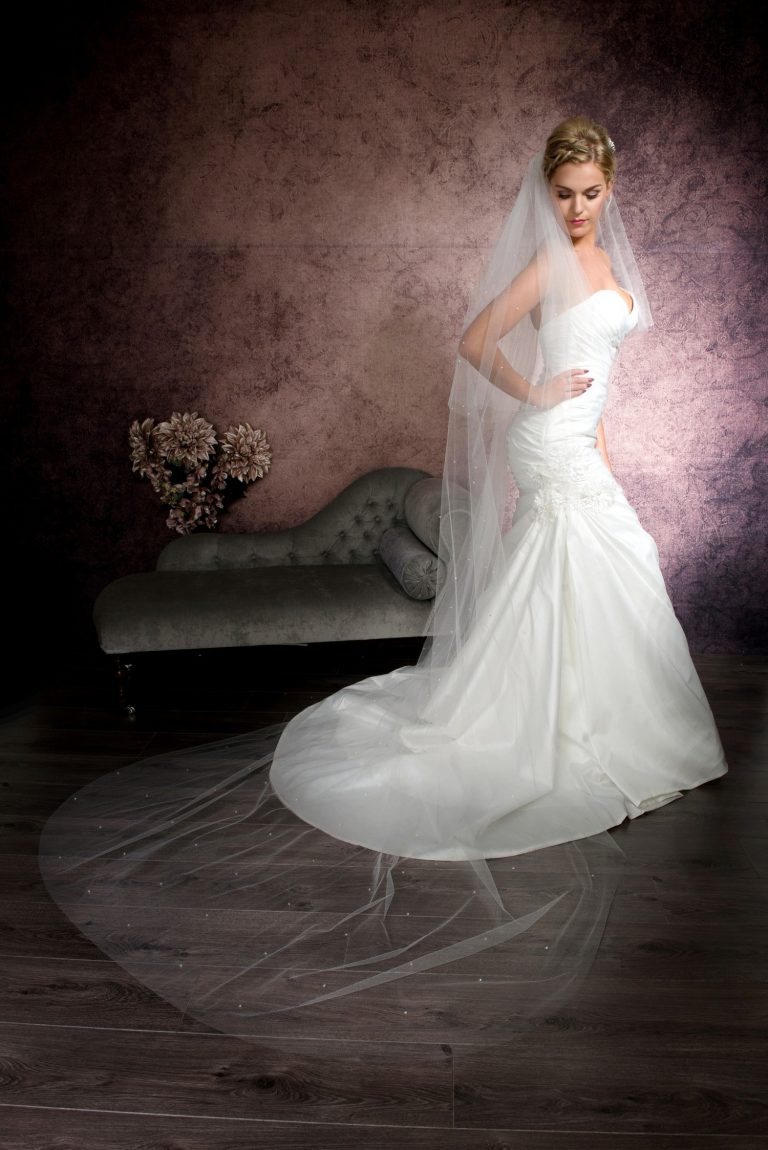 Striking bride wearing a cathedral length veil with Ab crystals