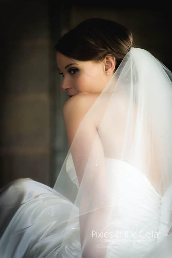 bride in veil portrait