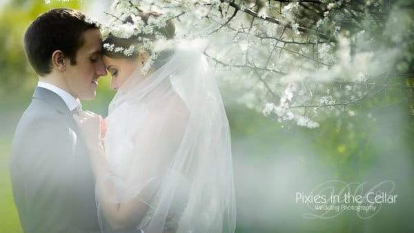 bride in veil in pretty meadow